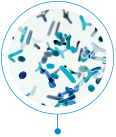 Microbiome visual